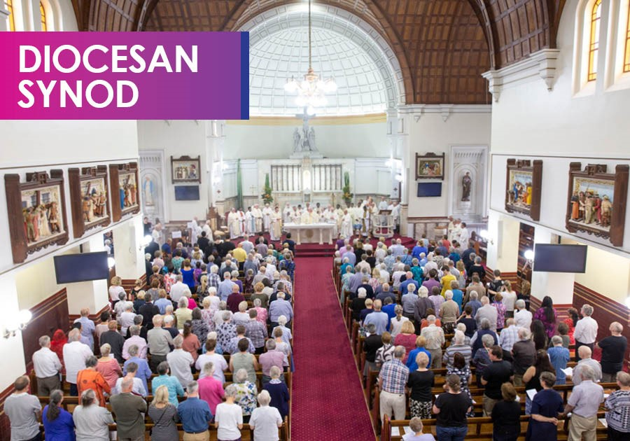 Diocesan Synod Image